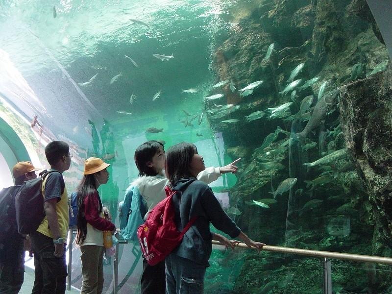 Lake Biwa Museum.jpg